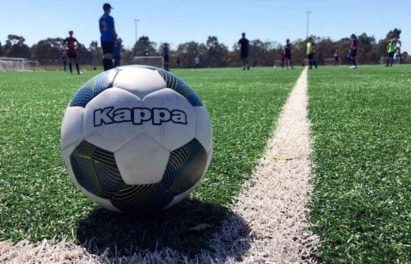 kappa ball on grass