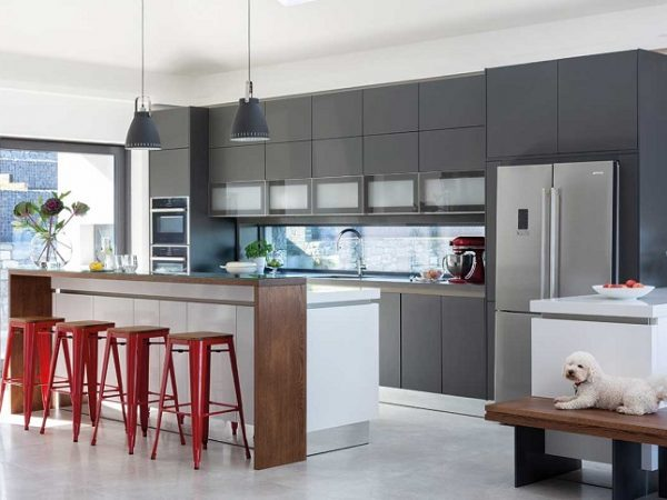 gray kitchen with red details and dog sitting